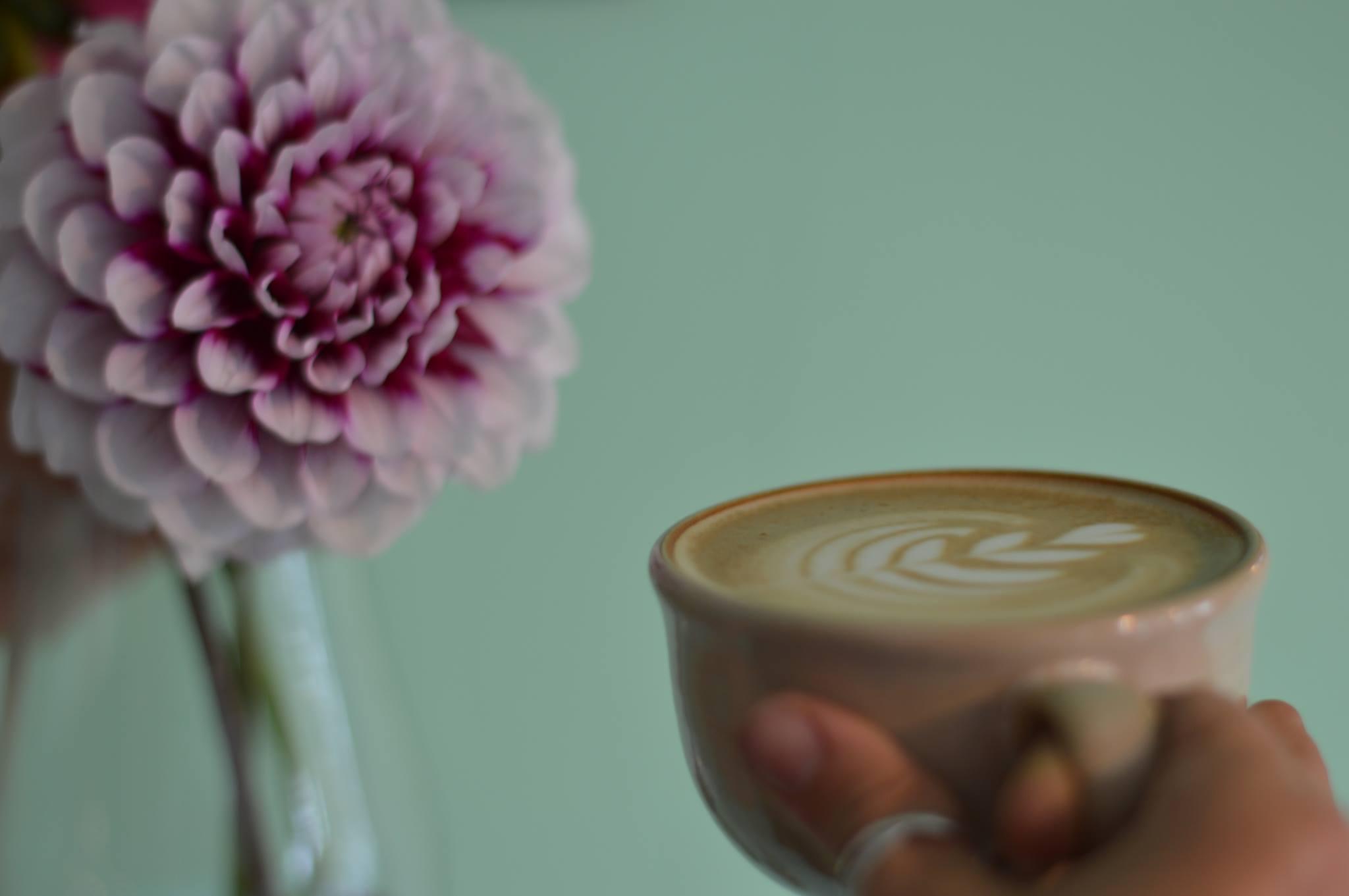 Good Vibes Café Falmouth